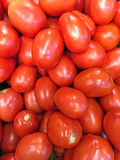 Cherry Tomatos Fotografie Stock