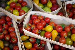Cherry Tomatos Royalty Free Stock Photos