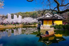 Cherry Blossom valley,wuxi,china. Cherry tower,Wuxi Taihu Yuantouzhu Park Cherry Blossom valley stock photo