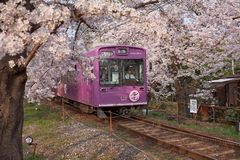 Cherry train in kyoto stock photo
