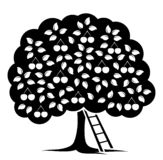 Cherry Tree stock illustratie