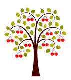 Cherry Tree vector illustratie