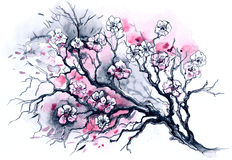 Cherry tree stock illustration
