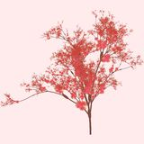Cherry Tree Art Royalty Free Stock Photography