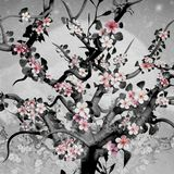 Cherry Tree Blossom in Black, White and Pink. Illustration royalty free illustration