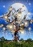 Cherry Tree Blossom, full moon and white lanterns. Illustration vector illustration