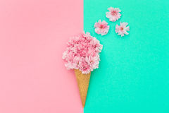 Cherry tree blossom in ice cream waffle cone minimal Royalty Free Stock Photos
