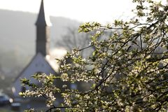 Cherry tree and chapel in the spring Royalty Free Stock Photography