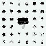 Cherry Tree Icon Universell uppsättning för växtsymboler för rengöringsduk och mobil vektor illustrationer