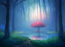 Free Cherry Tree In The Forest Royalty Free Stock Photos - 107477858