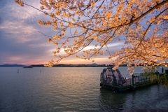Taihu lake stock images