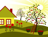 Cherry trees, flowers and cottage. Illustrated landscape with cherry trees, flower and cottage Stock Images