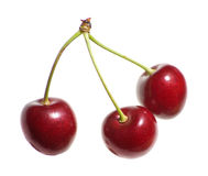 Cherry triplets Royalty Free Stock Photos