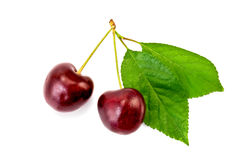Cherry two berries Stock Images