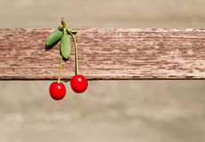 Cherry. Two cherries hanging on the bar Royalty Free Stock Photo