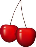 Cherry. Two red ripe cherry. Isolated Royalty Free Stock Photo