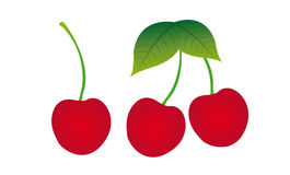 Cherry vector. Red and green cherry isolated over white background. vector Royalty Free Stock Photos