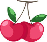 Cherry vector Stock Photos