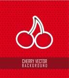 Cherry vector Stock Image