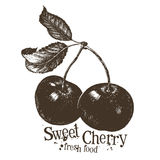 Cherry vector logo design template. fruit or fresh Royalty Free Stock Photography