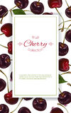Cherry vertical banners Stock Images