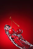 Cherry in water Stock Image