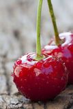Cherry with Water Drops Stock Image