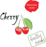 Cherry watercolor Royalty Free Stock Photography