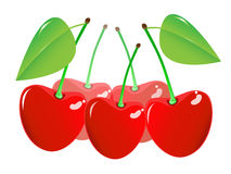 Cherry on a white background Royalty Free Stock Image