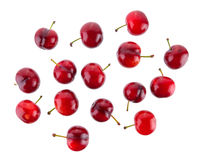 Cherry on white background Royalty Free Stock Image