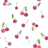 Cherry on white background. Vector seamless pattern. stock photo