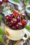 Cherry in white cup Stock Image