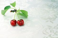 Cherry on white Stock Photos