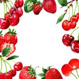 Cherry wild fruit frame in a watercolor style. Royalty Free Stock Images