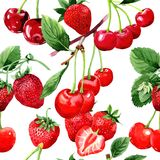Cherry wild fruit pattern in a watercolor style. Royalty Free Stock Photography