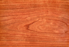 Cherry (wood texture) Stock Images