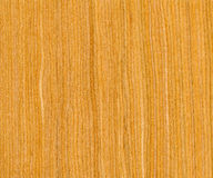 Cherry wood texture Royalty Free Stock Photo