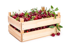 Cherry in wooden box Stock Photography