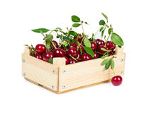 Cherry in wooden box Stock Photos