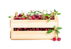 Cherry in wooden box Royalty Free Stock Photos