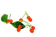 Cherry. Yard cherry red fragrance of a hospital, a hospital fiery beauty ah Royalty Free Stock Photo
