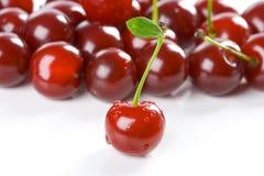 cherry zbiorów Zdjęcia Royalty Free