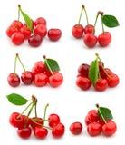 Cherrycollage Arkivbild