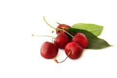 Cherryet isolerade mogen white Fotografering för Bildbyråer