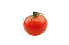 Cherryet isolerade tomaten Arkivfoto