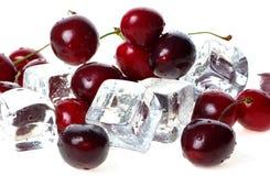 Cherryet skära i tärningar is över Royaltyfria Foton