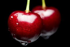 Cherryet tappar rött vatten för makroen Fotografering för Bildbyråer