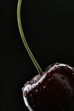 Cherryet tappar vatten arkivfoton