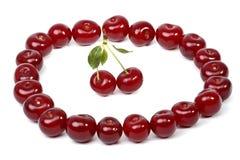 Cherryförhållanden Arkivbild
