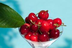 Cherryfjäder Fotografering för Bildbyråer